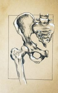 Sacroiliac joint SIJ pain Pelvis Pain Physiotherapy